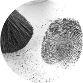 Fingerprint Development & Examination
